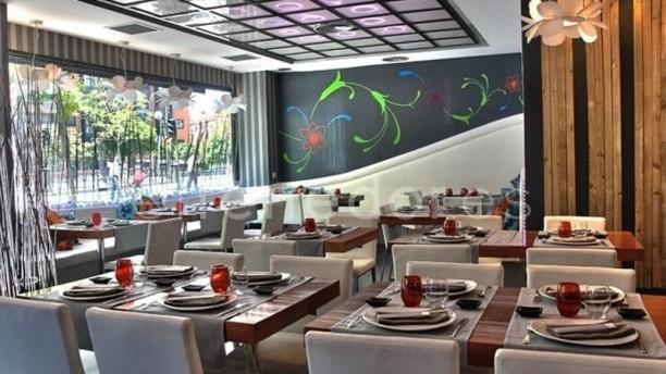 Lounge Yi Vista sala