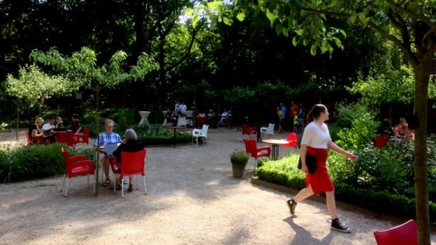 Giardino d'Italia (voorheen King of Italy) Het restaurant heeft een prachtige terrastuin