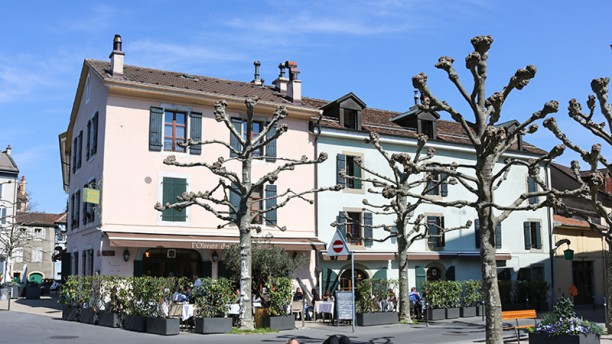 L'Olivier de Provence La terrasse