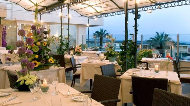 Astor La Conchiglia Terrazza ristorante La Conchiglia mare