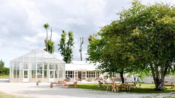 Lilla Bjers gårdskrog Garden