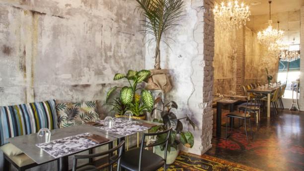 Monkey in The City (solo ristorazione) Vista sala