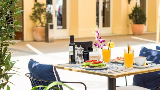 Café Montesol Ibiza Restaurante