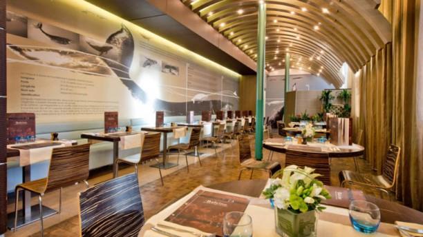 La baleine restaurant 47 rue cuvier 75005 paris for Resto jardin des plantes