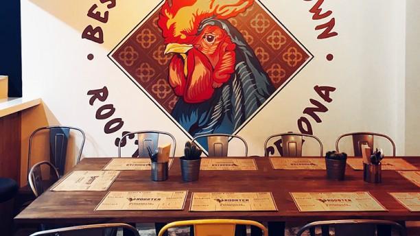 Rooster Vista sala