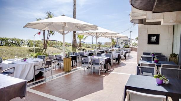 Iris Gallery - Hotel del Arte Terraza