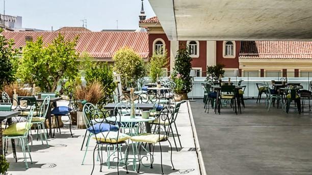 Restaurante Azotea Forus Barceló En Madrid Chueca Justicia