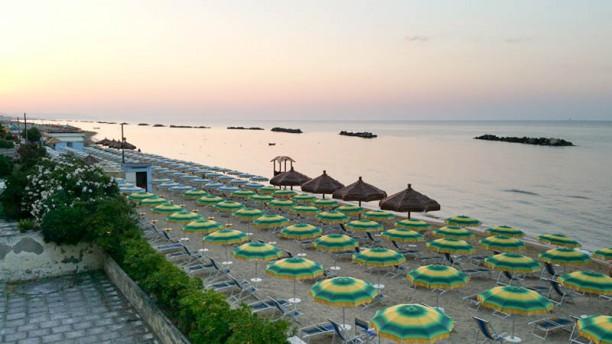 Gabbiano Blu Spiaggia