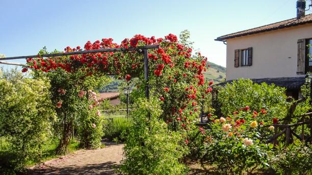 Veg Provobis Terrazza e giardino