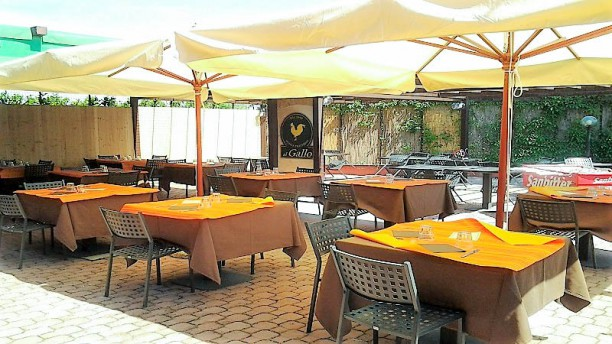 Trattoria Al Gallo In Padulle Restaurant Reviews Menu And