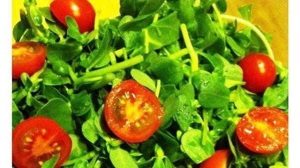 Galata Kitchen parslaine salad