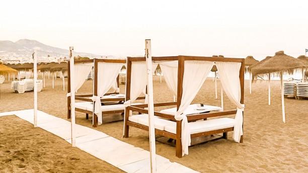 La Ponderosa - Playa Terraza