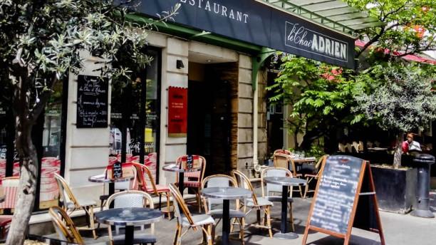 Le Chai d'Adrien Terrasse