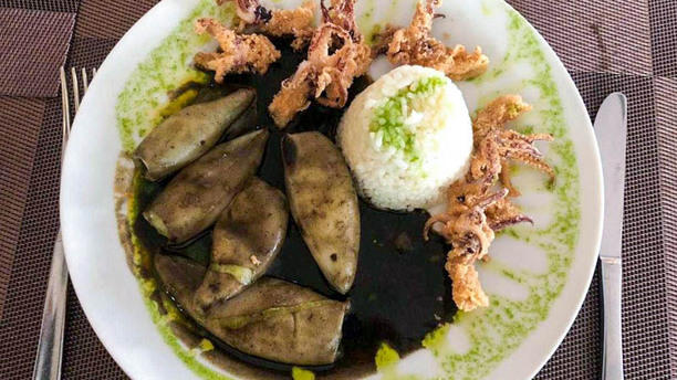 Bandana Gourmet Sugerencia del chef