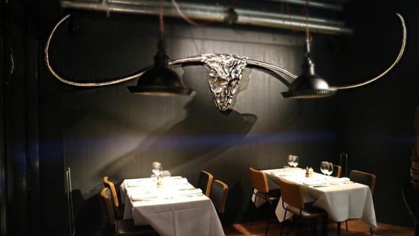 Carnivore salle