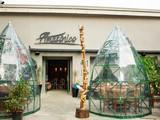 Restaurante Amazônico
