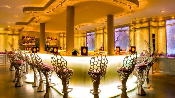 Ladurée Paris le Bar Vue de la salle