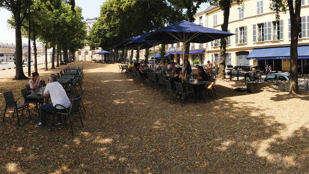 Café Bleu Roi