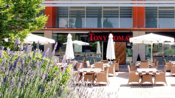 Tony Roma´s - Alcalá de Henares terraza