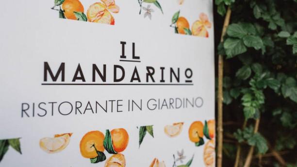 Il Mandarino - In the Garden Detaglio