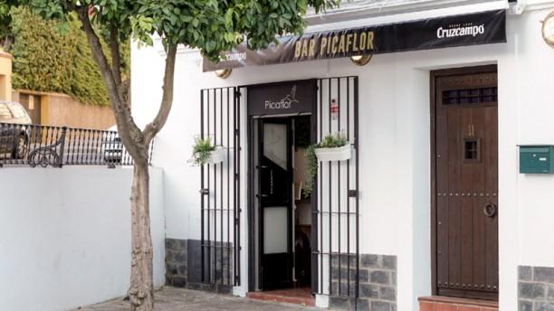 Bar picaflor Entrada