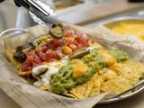 Tribu Burrito