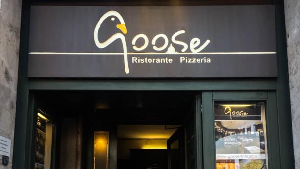 Goose Facciata