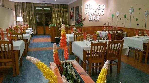 Drago Pincho Bar Comedor Principal