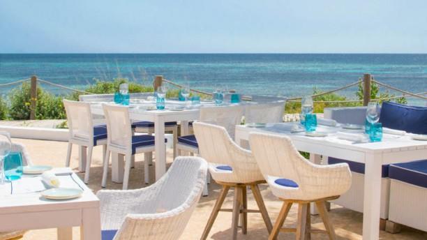Gecko Restaurant Hotel Gecko Beach Club In Formentera