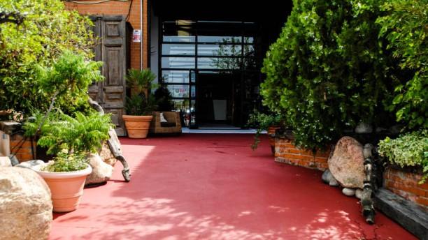 14 Rosas Alcobendas La entrada