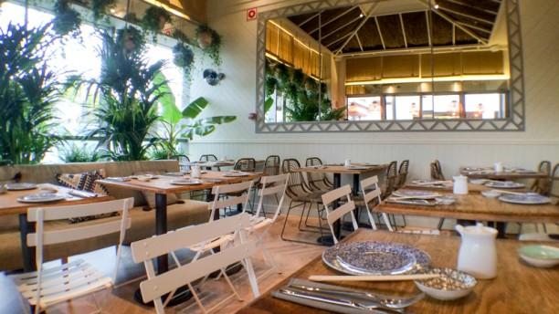 Sushita Café - Parque Sur Salón