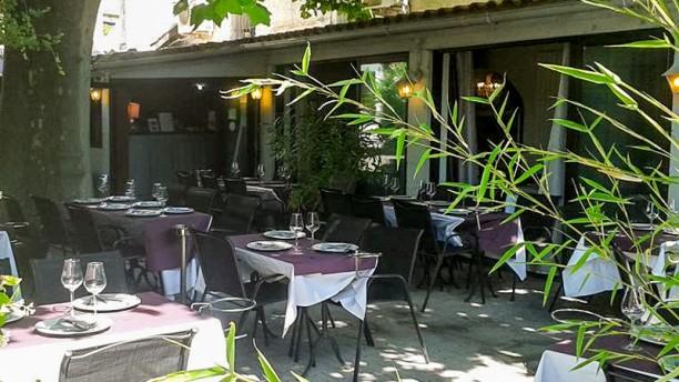 L'Enclos de Saveurs Salines le patio ombragué grâce à un platane centenaire