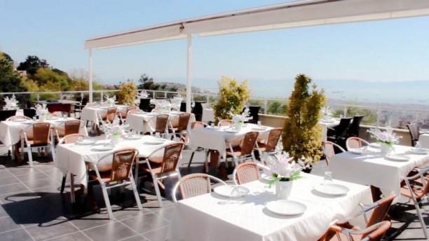 Doğa The terrace
