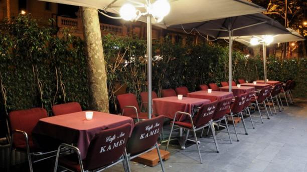 Café Nou Kamel Terraza