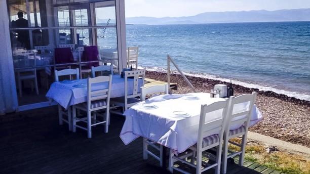Kalamarya Terrace