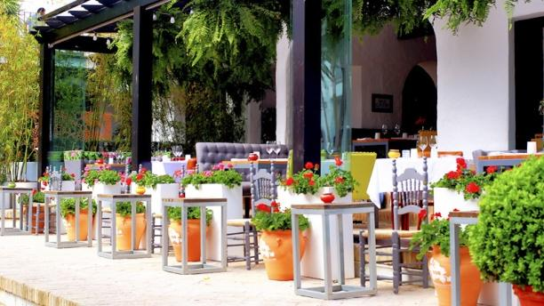 BIBO - Puente Romano Beach Resort Vista terraza
