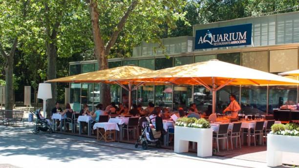 Aquarium Vista terraza