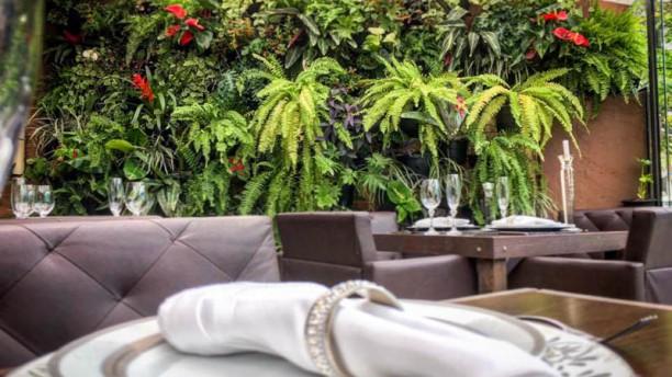 Filomena Café Bistrô Vista do interior