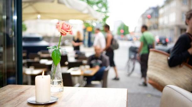 Cafe Katz terrace