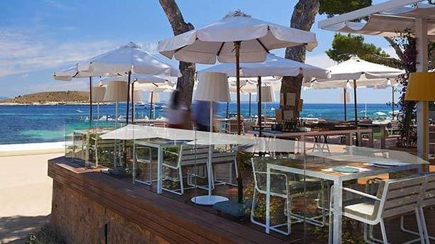 Pez Playa Mallorca Terraza playa