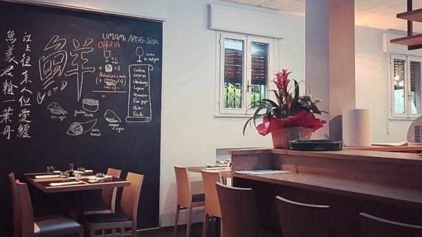 Umami Fusion Restaurant Interno