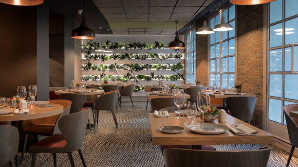 BLoved by Eboca Restaurants Vista sala