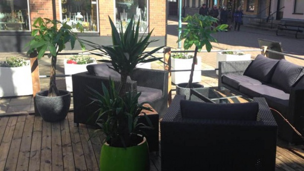 Fridas Terrace