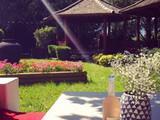 Garden Fifteen