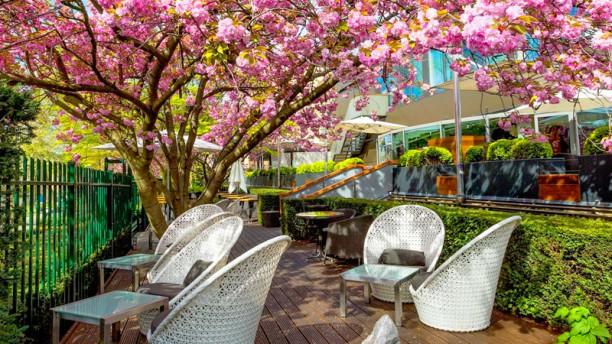 Serre Restaurant (Hotel Okura Amsterdam) Serre - Terras