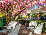 Serre Restaurant (Hotel Okura Amsterdam)