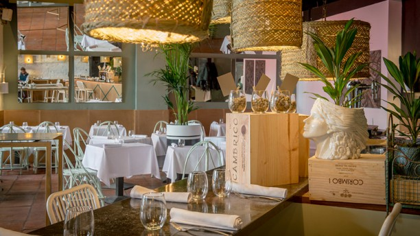 Excellent Food Very Attentive Service La Encarna Reviews