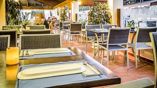 Arohaz Gastrobar Terraza