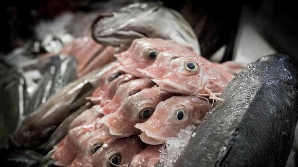 Sea Me - Peixaria Moderna prato