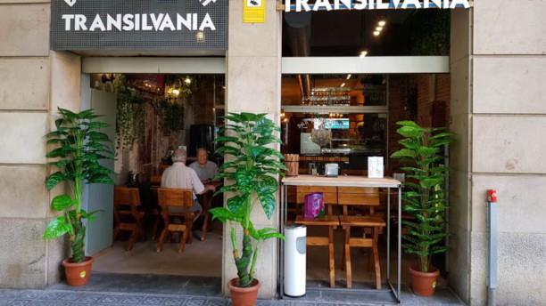 Transilvania Entrada